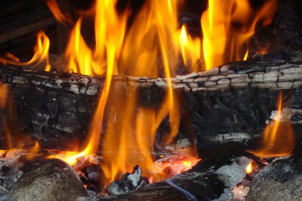 firewood tucson